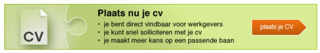 Bewijs dat ICTers niet kunnen spellen ... (cv/CV)